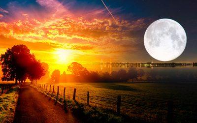 Dù bạn là Mặt Trời hay Mặt Trăng thì bạn vẫn sẽ tỏa sáng theo cách riêng của mình